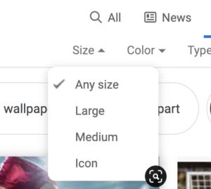 google large, medium or icon sizing for image